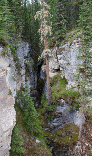 Small canyon on road to Maligne Lake