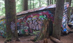 Train Wreck in Whistler BC